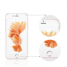 Tempered Glass Covers for iPhone